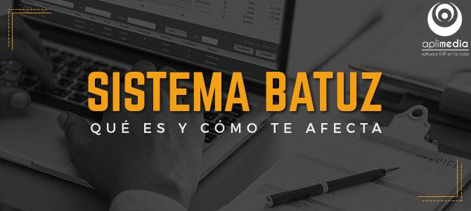 Sistema Batuz: ¿qué es y como afecta a PYMES y autónomos vizcaínos?