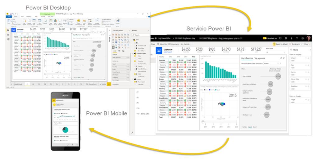 Software para empresas: business intelligence