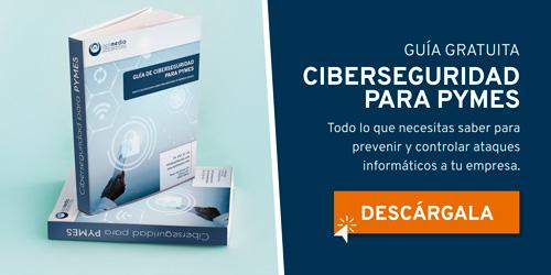 Guía de seguridad informática para empresas 1